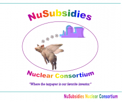 NuSubsidies cover page